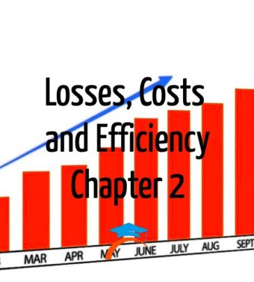 Losses, Costs and Efficiency