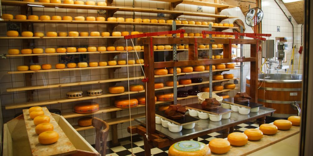 cheese-production-lean-manufacturing